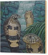 African Black Forest Cobras Wood Print