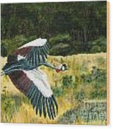 African Crowned Crane Painting Wood Print