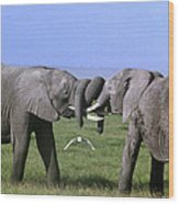 African Elephant Greeting Endangered Species Tanzania Wood Print