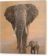 African Elephants Wood Print by David Stribbling