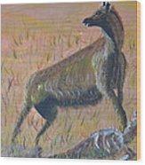 African Hyena Wood Print