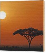 African Morning Wood Print