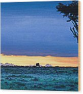 African Panoramic Sunset Landscape Wood Print