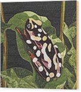 African Reed Frog Wood Print by Lynda K Boardman