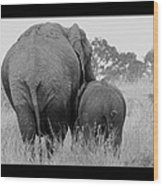 African Safari Elephants 3 Wood Print
