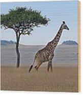 African Safari Giraffes 2 Wood Print
