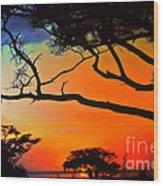 African Skies Wood Print