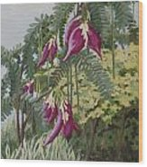 African Tulip Tree Wood Print