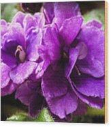 African Violet Wood Print