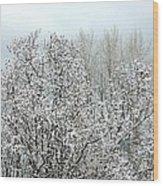 After A Light Snowfall Wood Print