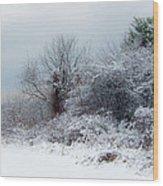 after Snow Storm Wood Print