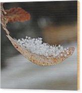 After Snowfall Wood Print