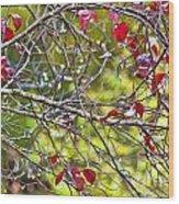 After The Autumn Rain 2 - Digital Paint Wood Print