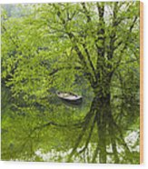 After The Rain On The Valley River Wood Print
