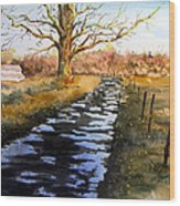 After The Rain Wood Print by Sam Sidders