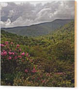 After The Storm At Graveyard Fields Wood Print