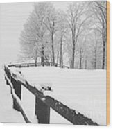 After The Winter Storm Wood Print