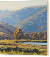 Afternnon Light Lithgow Wood Print