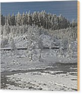 Afternoon At Mud Volcano Area - Yellowstone National Park Wood Print