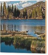 Afternoon At Sprague Lake Wood Print