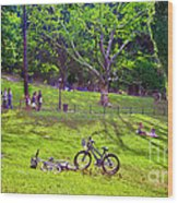 Afternoon In The Park With Friends Wood Print