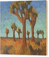Afternoon Light At Joshua Tree Wood Print