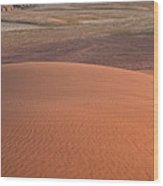 Afternoon Light On The Dune In Wadi Rum Wood Print