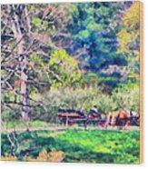 Afternoon Ride Wood Print