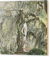 Afton Plantation Villa Statuary Wood Print