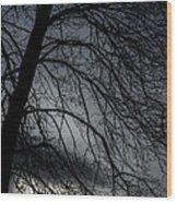 Against A Winter Sky Wood Print