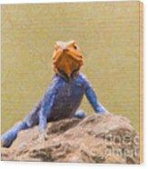 Agama Lizard On Rock Wood Print
