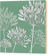 Agapanthus Breeze Wood Print