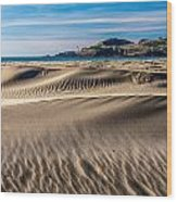 Agate Beach Dunes And Yaquina Head Light Wood Print by Greg Stene