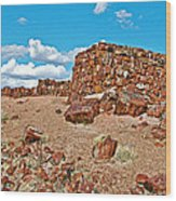 Agate House In Petrified Forest National Park-arizona  Wood Print