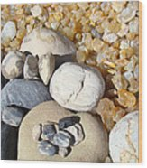Agates Rocks Art Prints Petrified Wood Fossils Wood Print