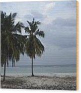 Agatti Island Wood Print