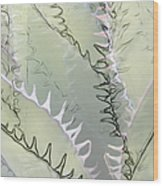 Agave Abstract Wood Print