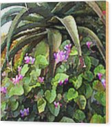 Agave And African Violets Wood Print