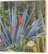 Agave And Cactus Wood Print