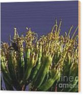Agave Bloom Wood Print