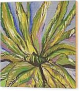 Agave Wood Print by Karen Carnow