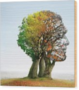 Ageing Wood Print