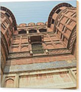 Agra Fort In India Wood Print