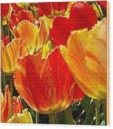 Agressive Tulips Wood Print