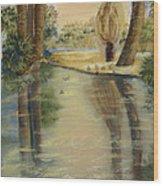 Agua Caliente Wood Print