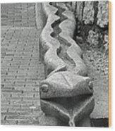 Aguas Calientes Snake Wood Print