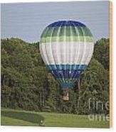 Air Balloons  0458 Wood Print