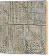Aircraft Graveyard, Usa Wood Print