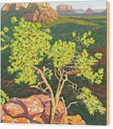 Airport Mesa Vortex - Sedona Wood Print