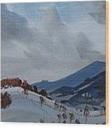 Airyhill Wood Print